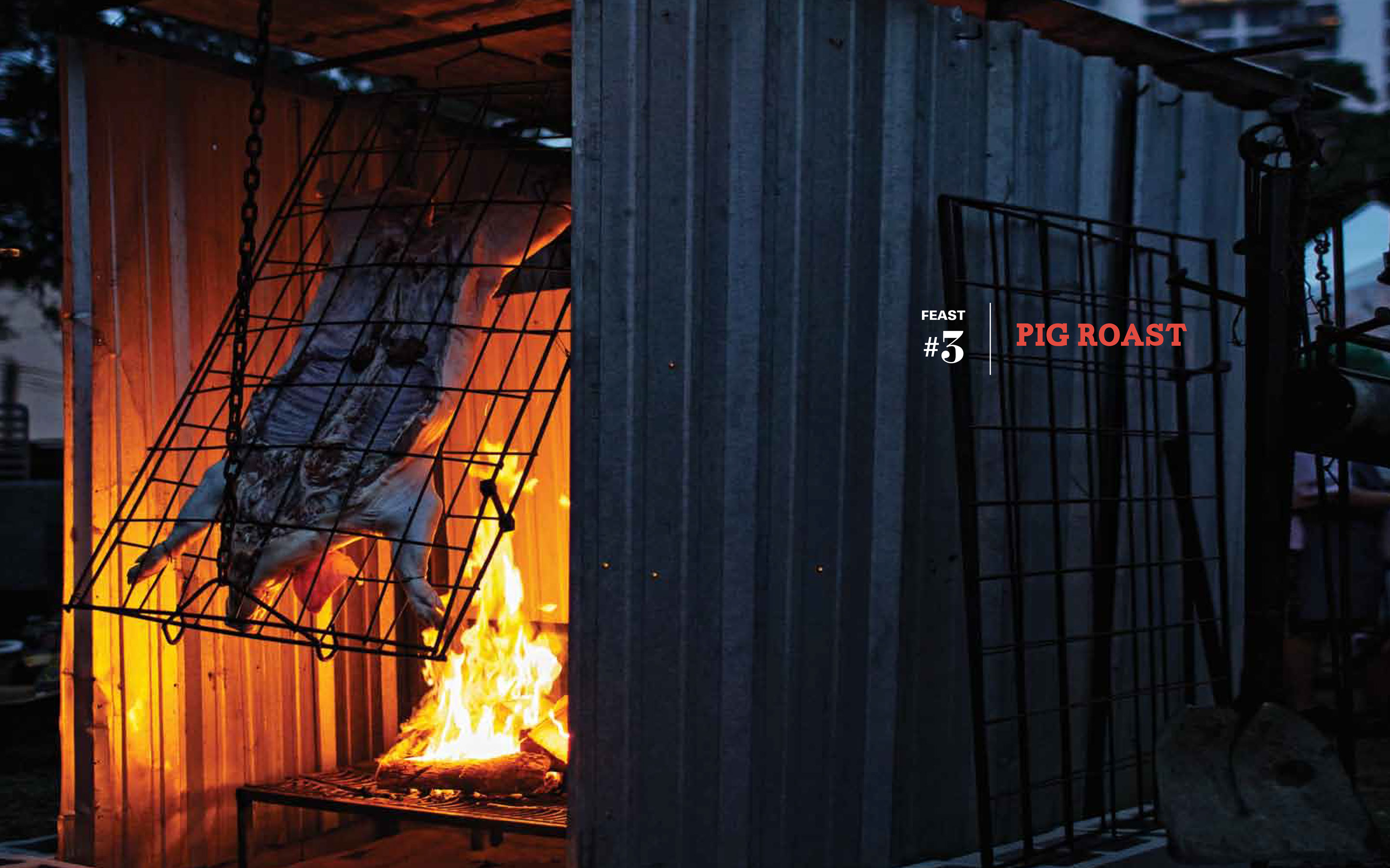 Jody Horton Photography - Whole pig roasting above a fire on a grate.