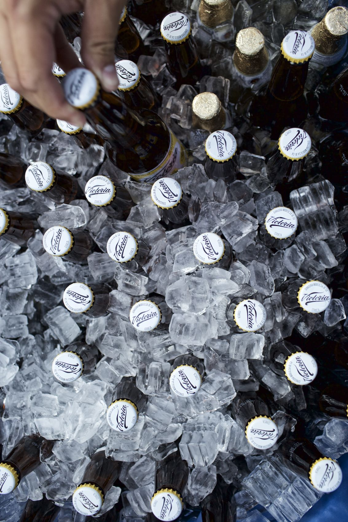 Jody Horton Photography - Victoria beer in ice from above.