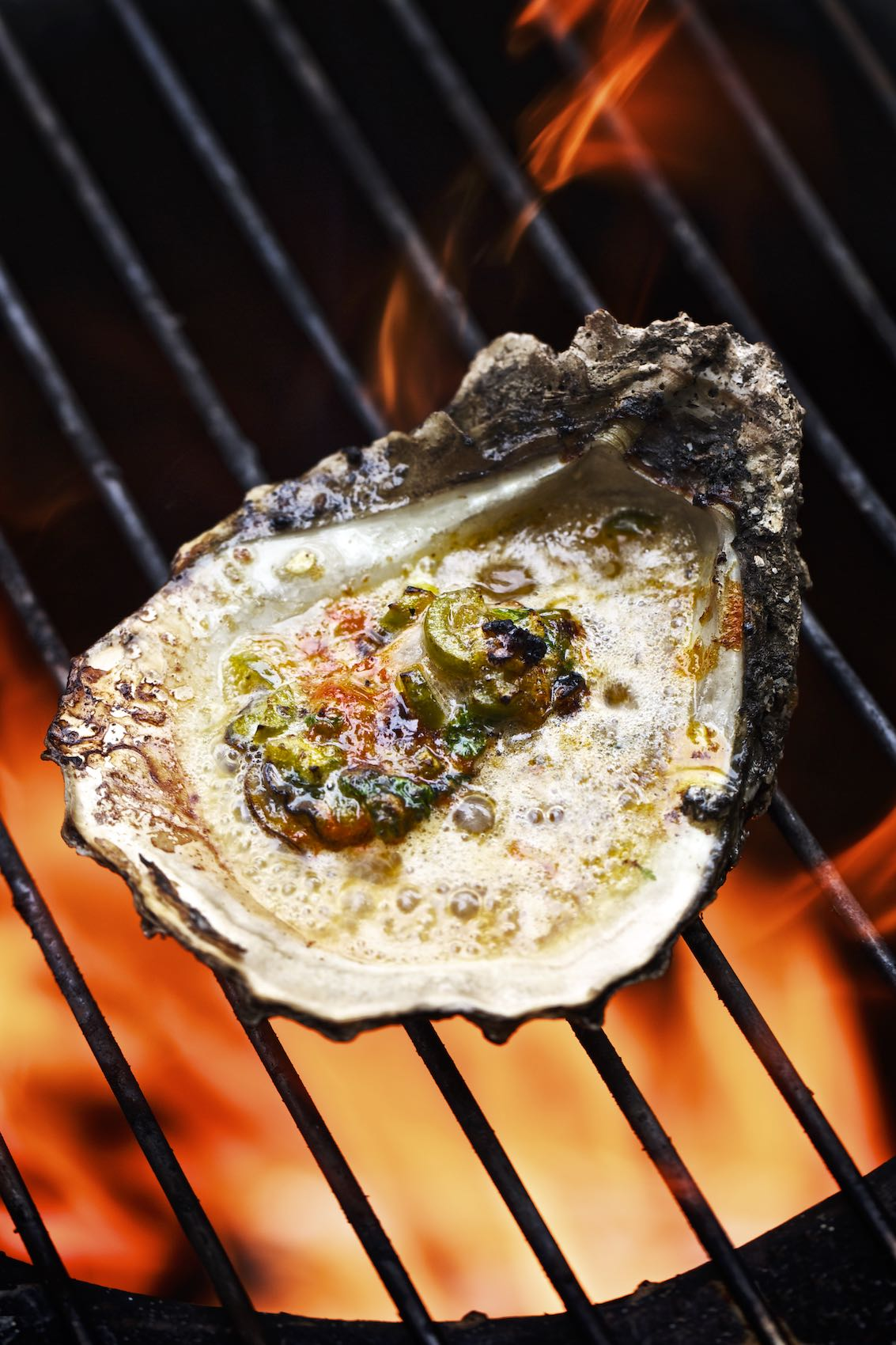 Jody Horton Photography - Single oyster sitting on a fire grill.