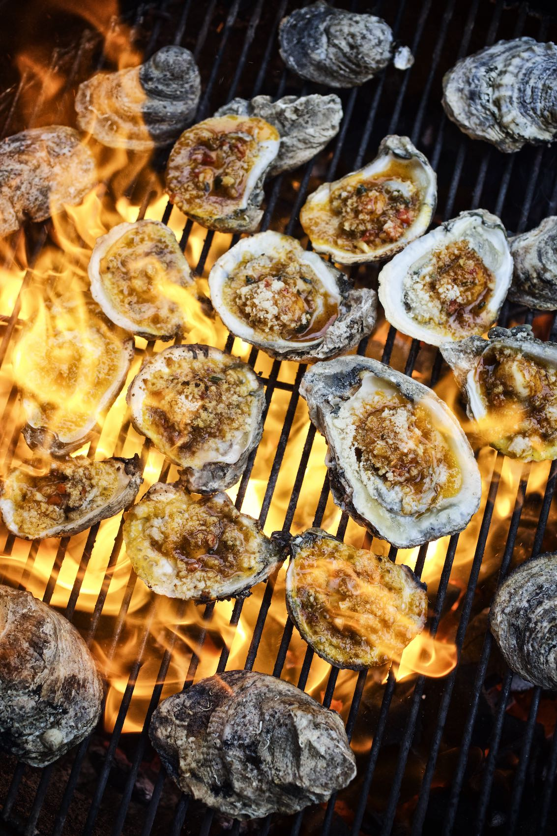 Jody Horton Photography - Multiple oysters cooking on a wood fired grill.