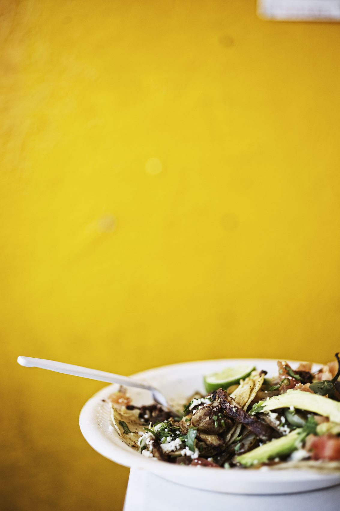 Jody Horton Photography - Mexican dish on plastic plate against bright yellow wall.