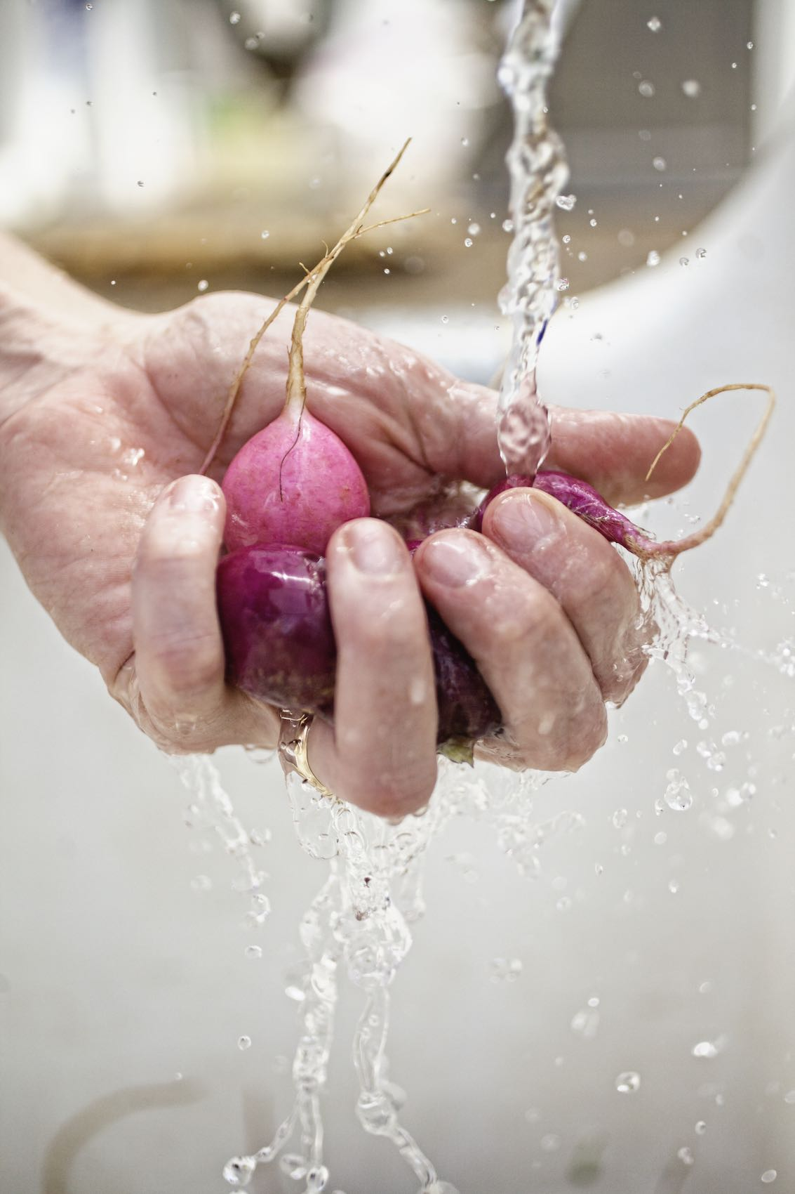 Jody Horton Photography - Hand washing radishes under water.