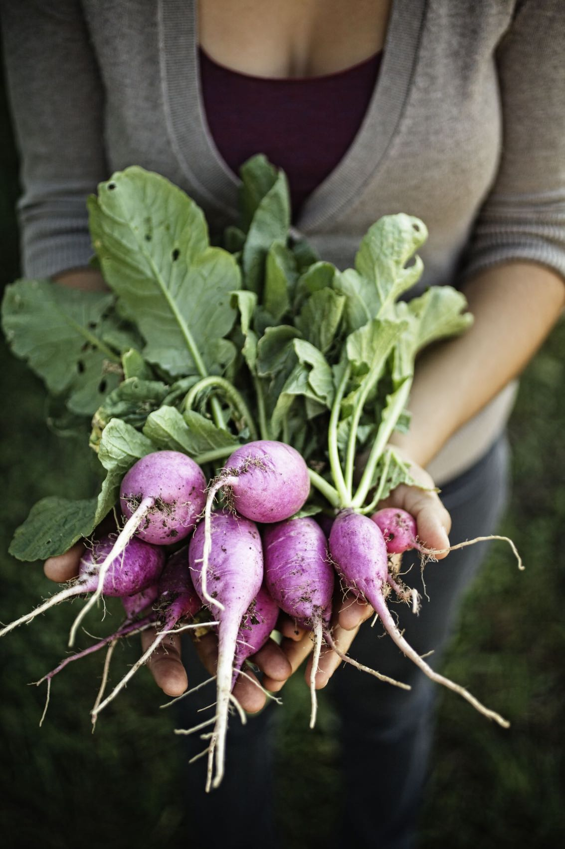 Jody Horton Photography - Woman presenting freshly picked radishes.