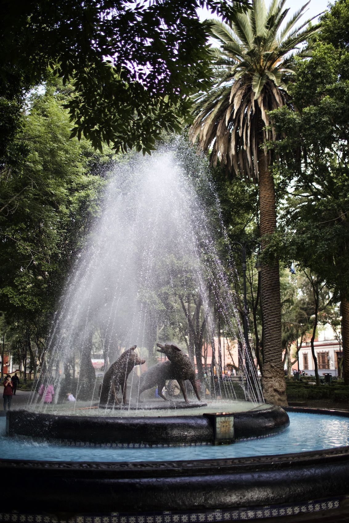 Park fountain with brass wolves in Mexico City.