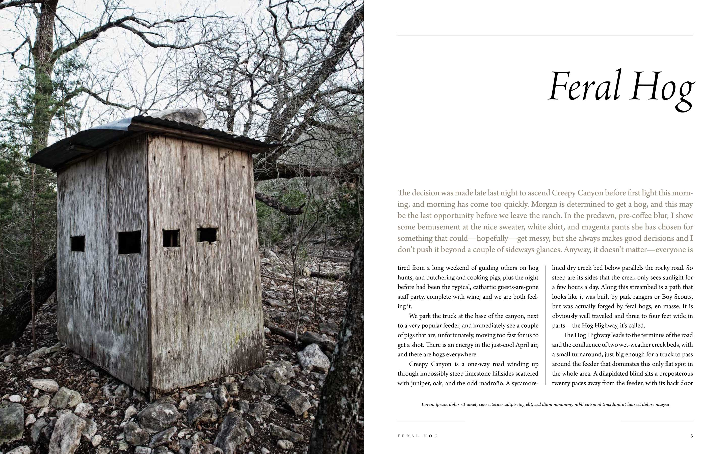 Jody Horton Photography - Feral Hog chapter opening page for Afield.