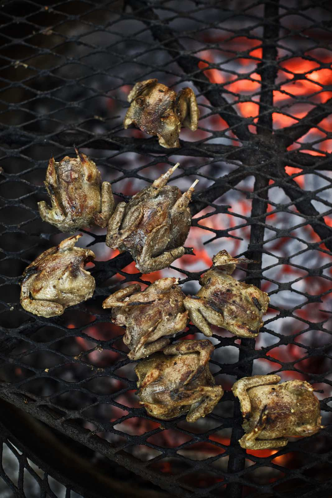 Jody Horton Photography - Grilled doves.