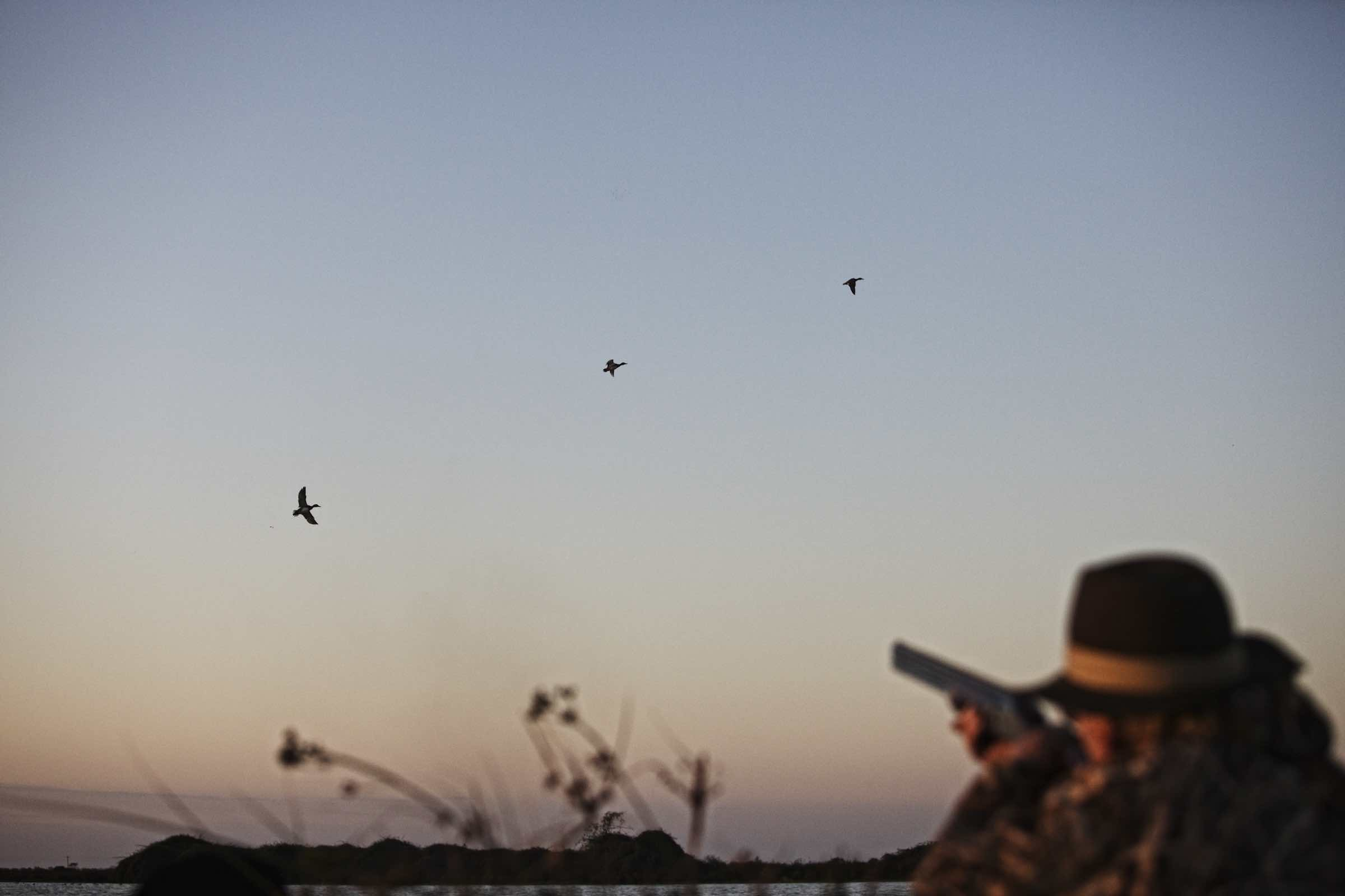 Jody Horton Photography - Hunter aiming at ducks flying against the sunset.