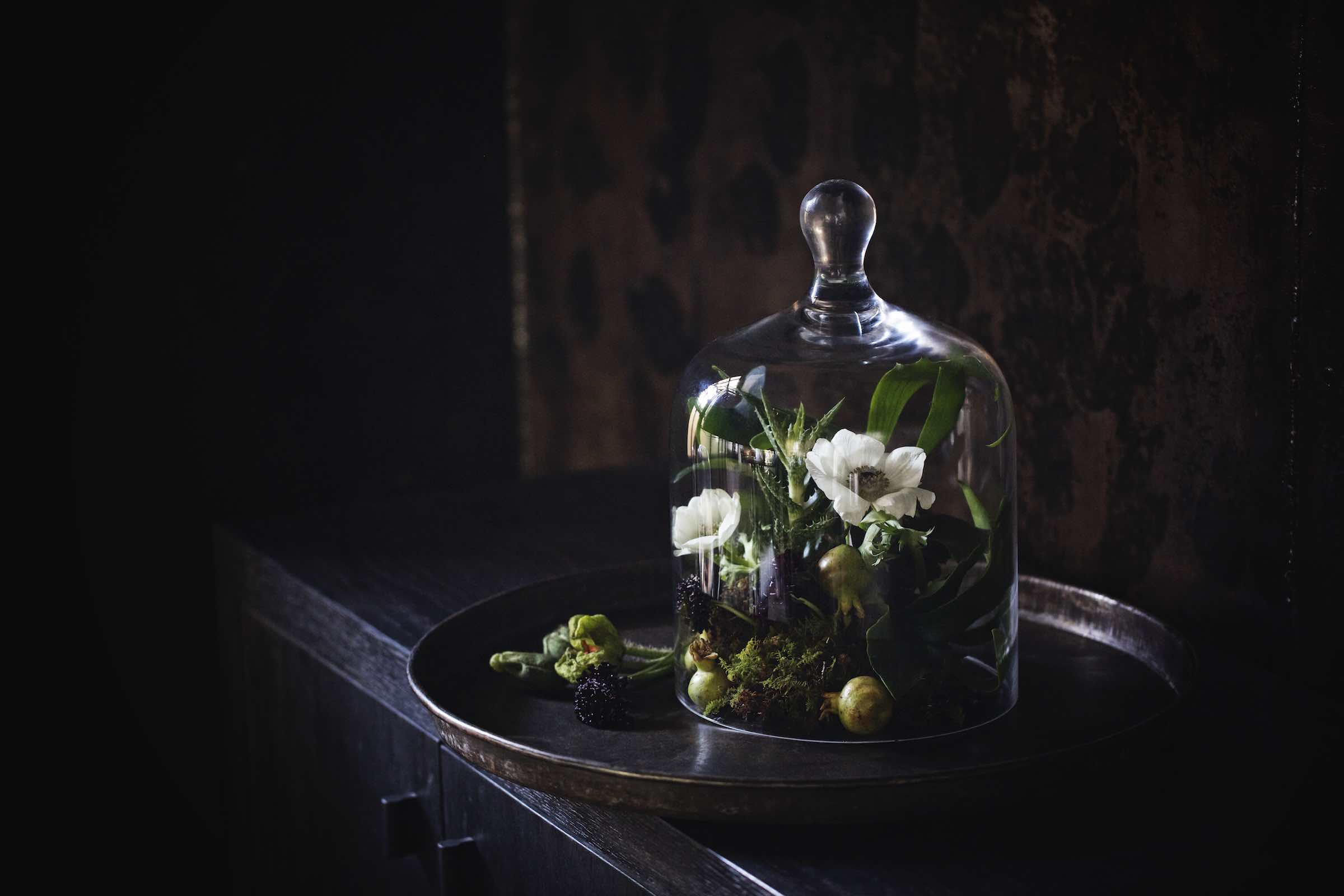 Jody Horton Photography - Decorative terrarium on a dark, wood cabinet.