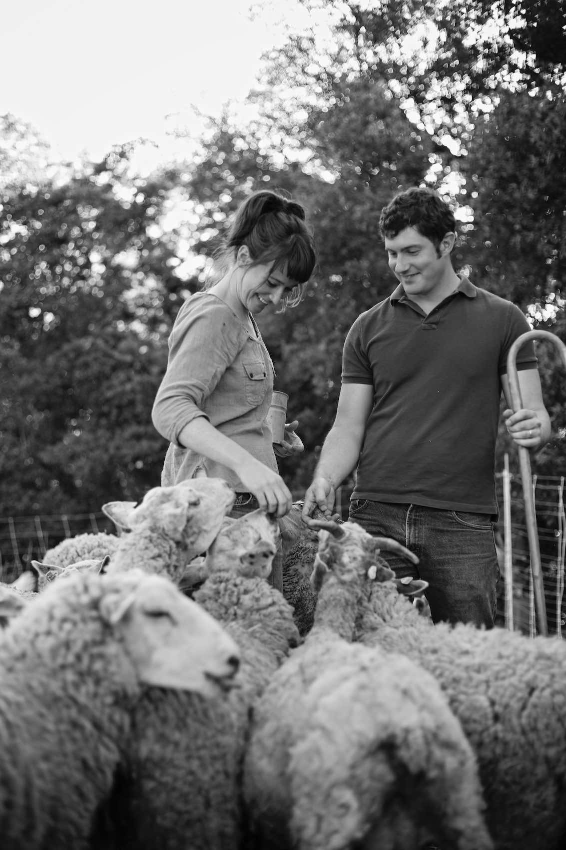 Jody Horton Photography - Farmers feeding sheep, shot in B&W.