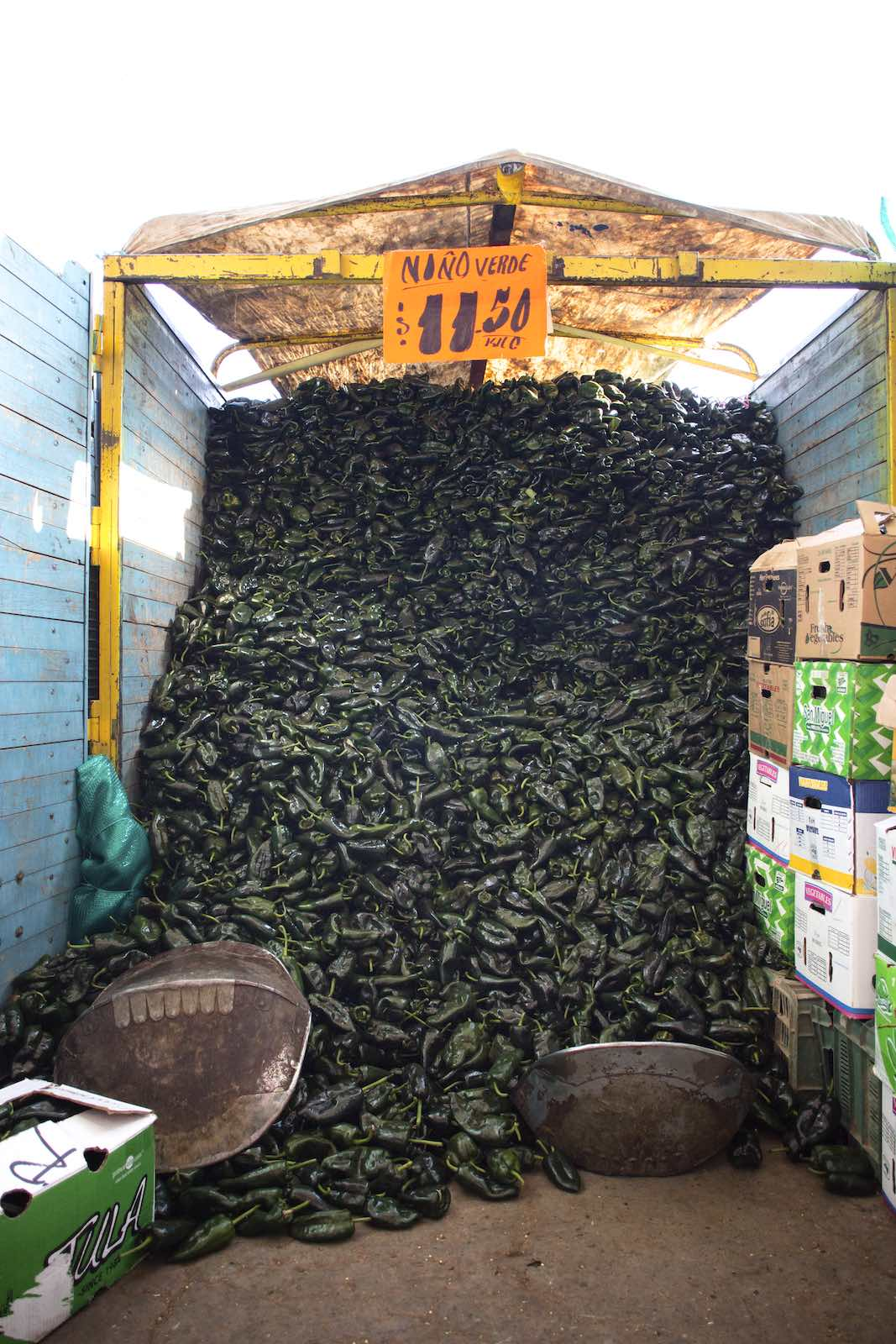 Jody Horton Photography - Hundred of poblano peppers flooding out from a stand in the food market.