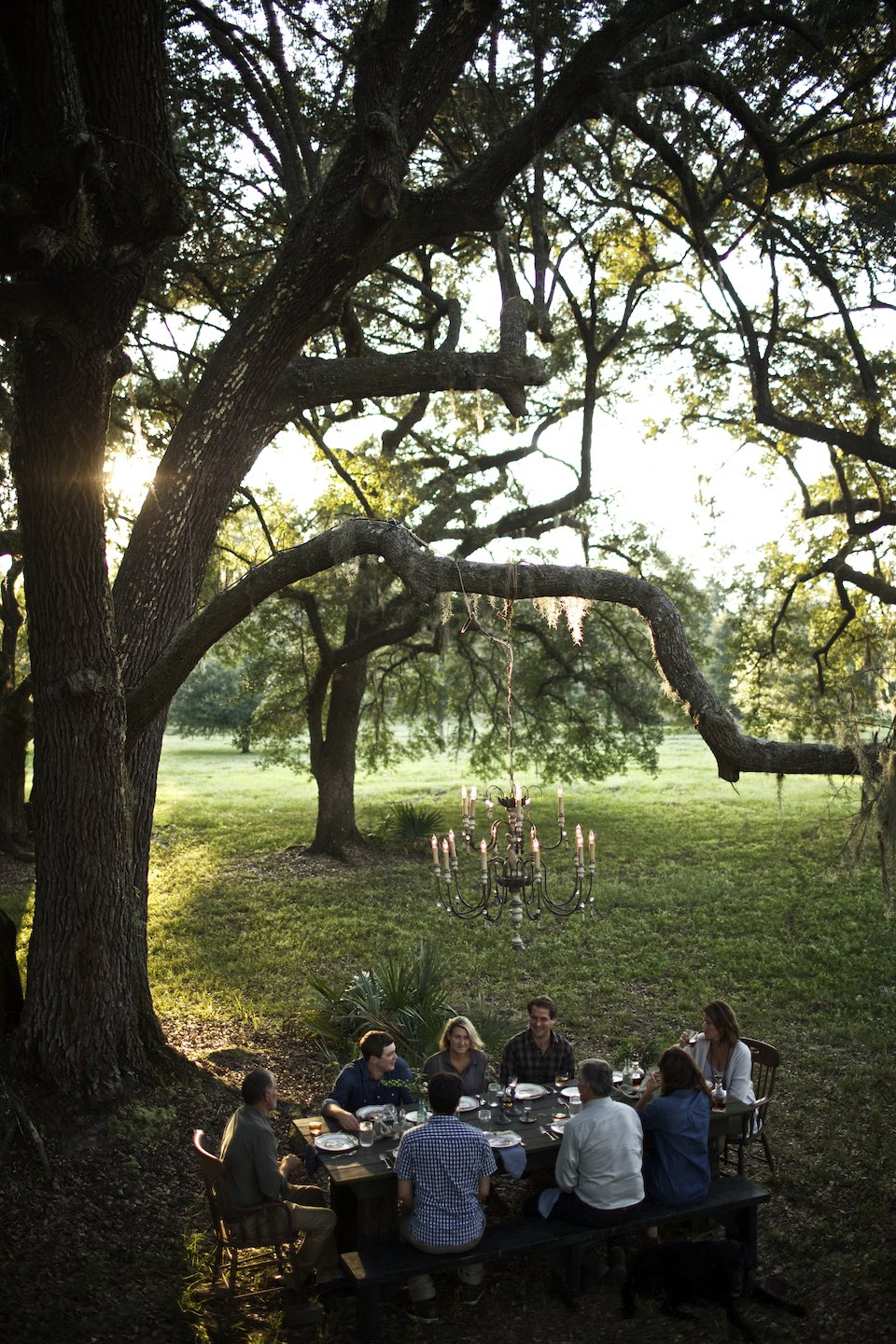 Friends gathered outdoors for dinner, surrounded by live oak trees,