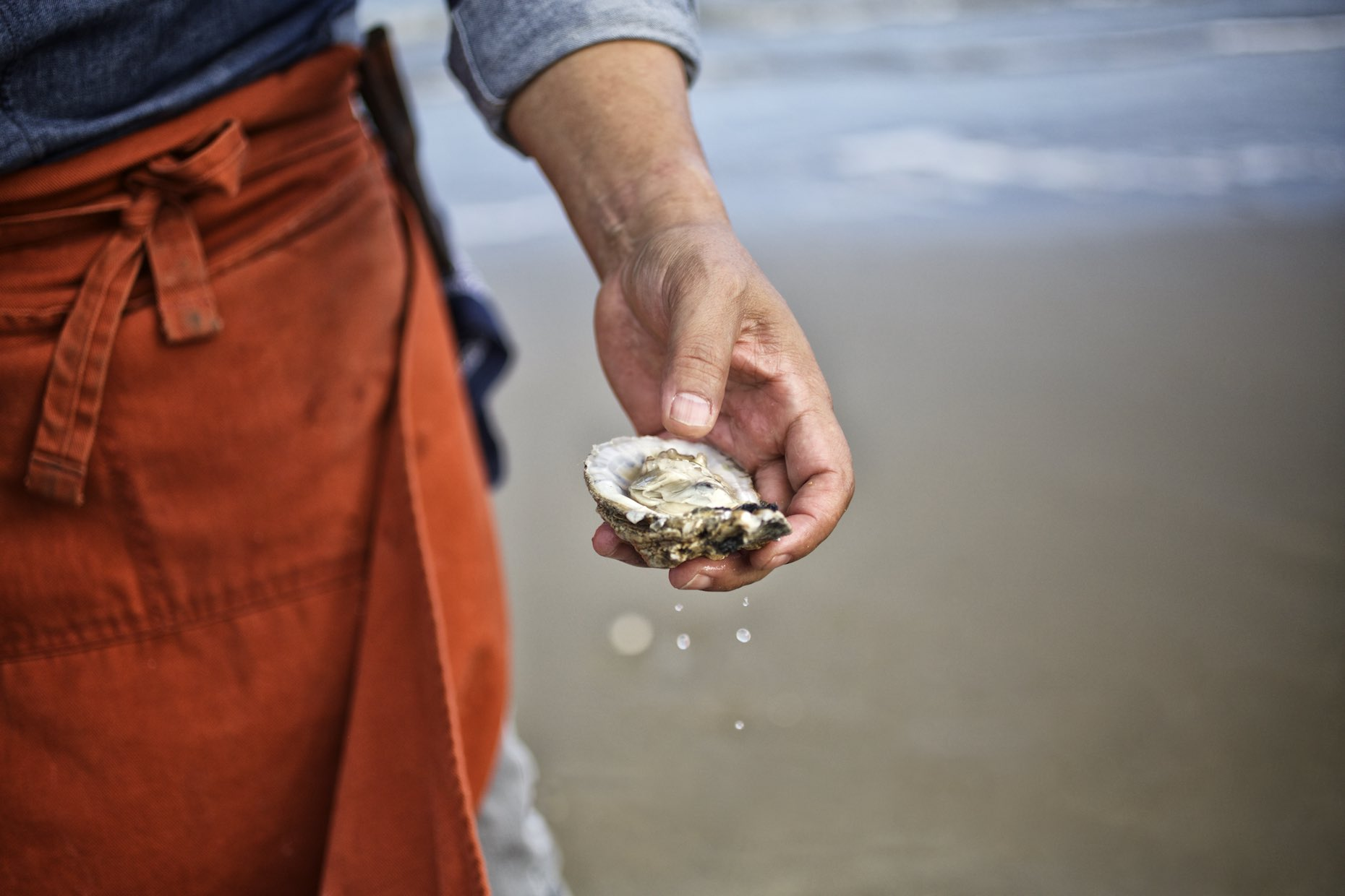 Hand holding a single oyster awash with sea water, on a sandy beach.