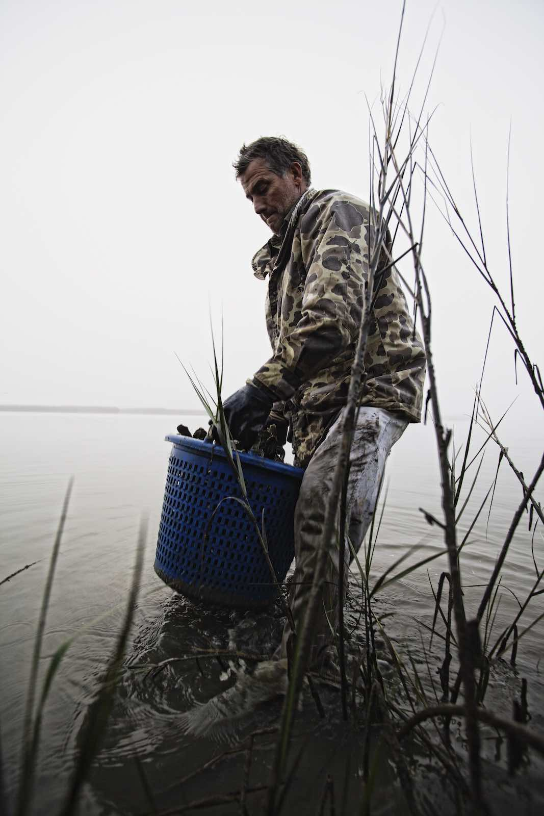 oyster_harvest_photography-14
