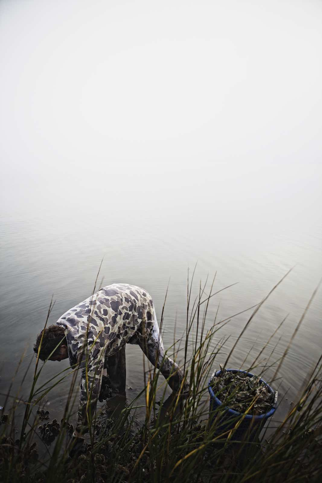 Jody Horton Photography - Fisherman collecting oysters in shallow water.