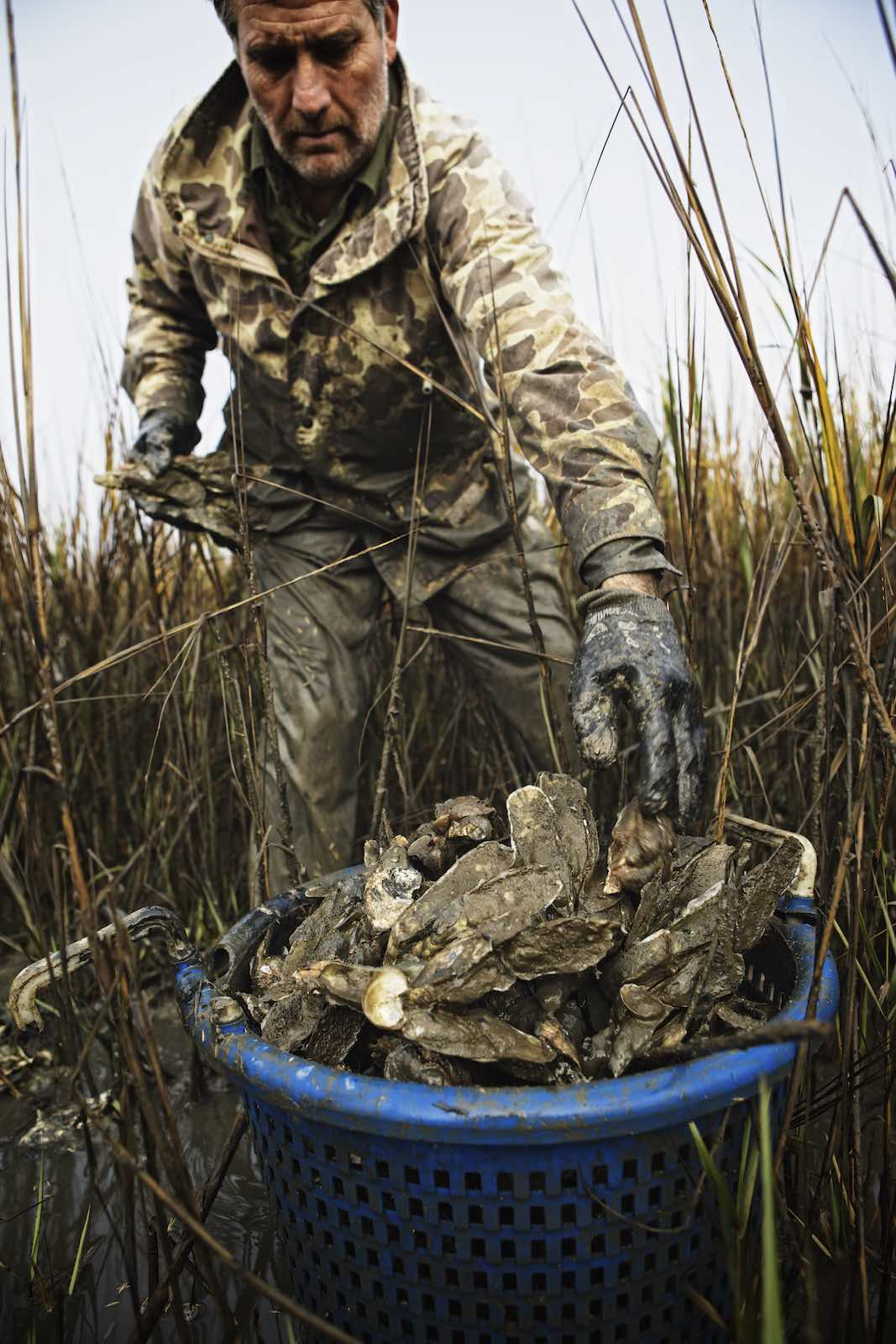 Jody Horton Photography - Fisherman stacking fresh caught oysters in a bucket.