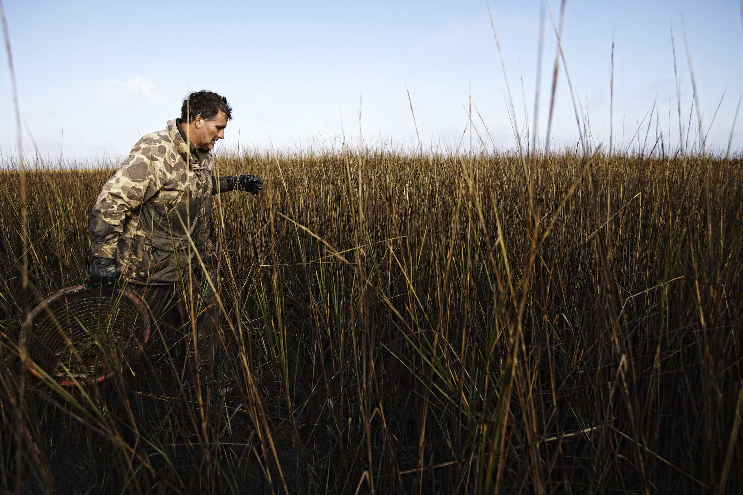 Jody Horton Photography - Fisherman walking through tall grasses during the oyster harvest.