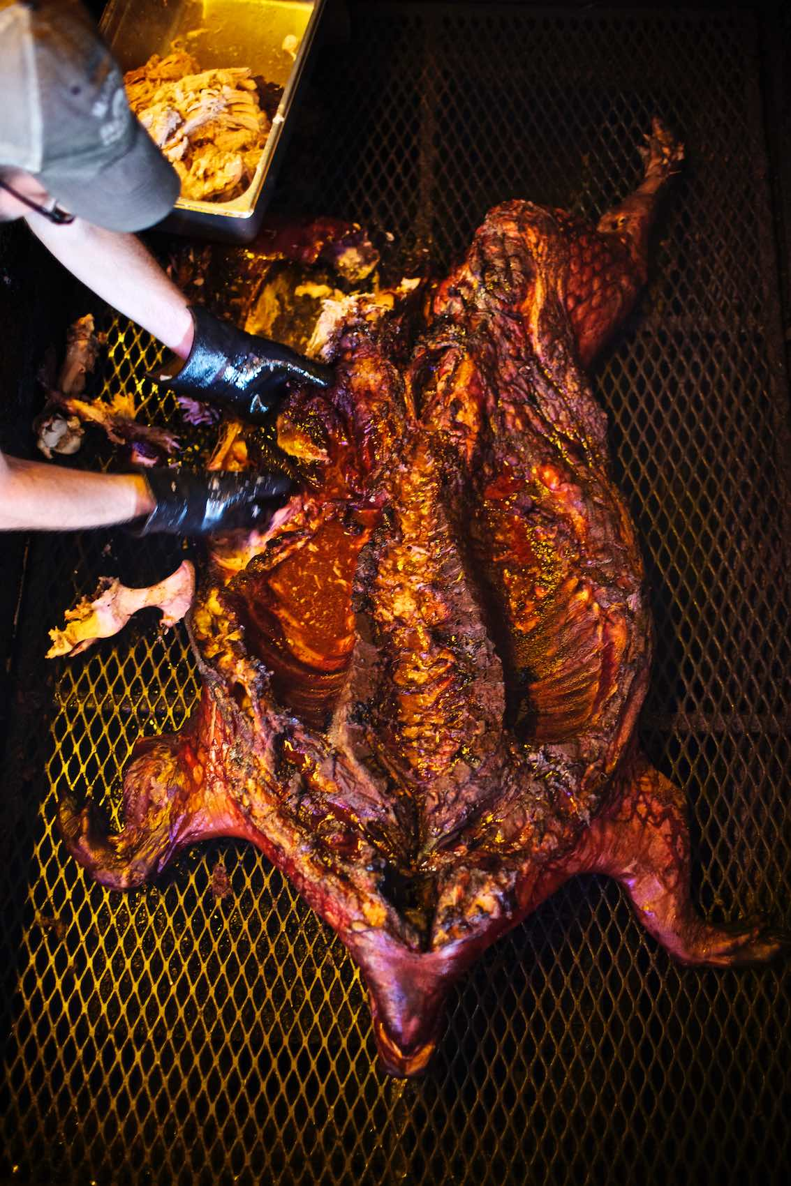 Jody Horton Photography - Inside of whole cooked hog from above.