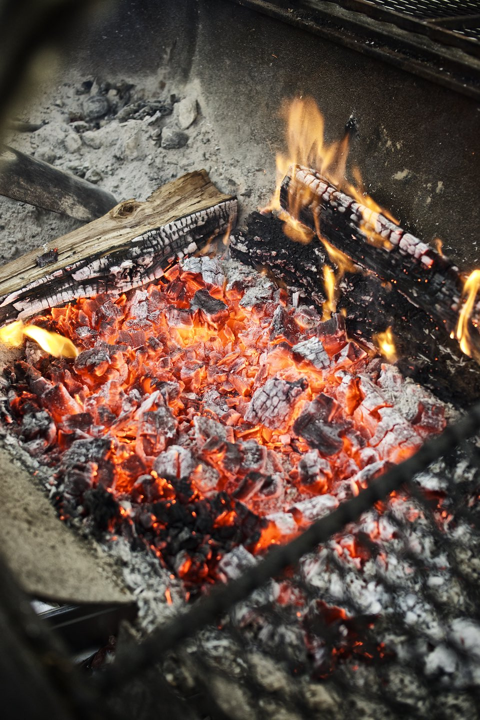 smoke_cookbook_woodfired027